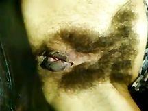 Casalinga gioca con la sua topa pelosissima