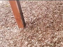 Me la scopo nel parco mentre piove!